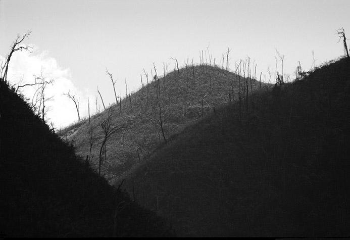 VIETNAM. A Luoi Valley. Dead trees remain in a defoliated hillside. The terrain is covered with scrub preventing new trees from growing. 1987