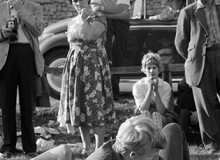 "GB. England. Beaulie Jazz Festival. As youngsters embraced on the village green the locals behaved like tourists, fascinated by their ""lewd"" behaviour. Liberation started with the young and in this setting it was a novelty. 1961."