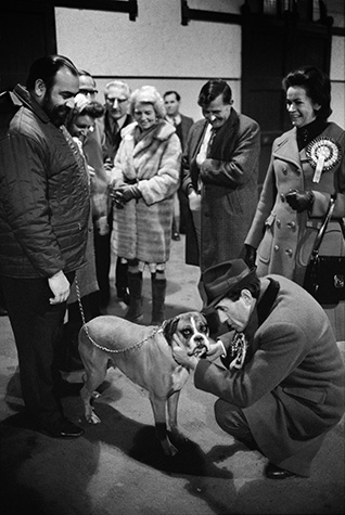 GB. England. Jeremy Thorpe MP. As leader of the Liberal Party he was visiting his constituents in Devon where he was trying to befriend a dog. Later he was charged with hiring a hit man to kill his lover who was blackmailing him. A lonely spot on the moors was chosen with a convenient tin mine nearby in which to dispose of the body. At the last minute the assassin balked and shot the lover's dog instead. This dog seemed to predict it all. 1974.