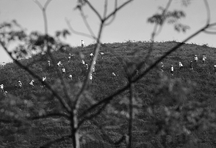 VIETNAM. Villagers help to prepare a denuded hillside for replanting with saplings. 1987