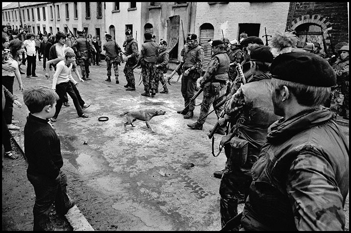 IRELAND. Belfast. 1972. Some owners trained their dogs to be aggressive towards soldiers.